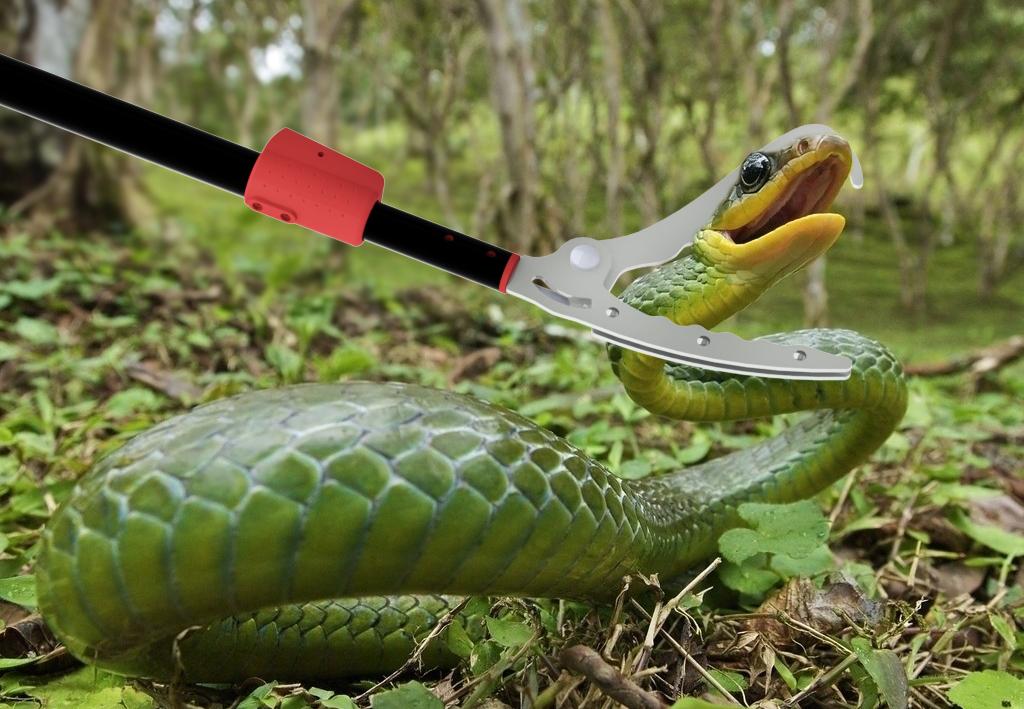 捕蛇夾抓蛇